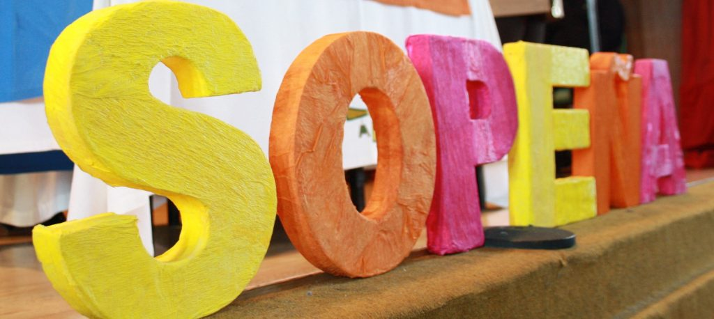 Proyecto Solidario Sopeña